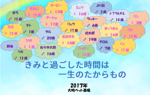 2018 11